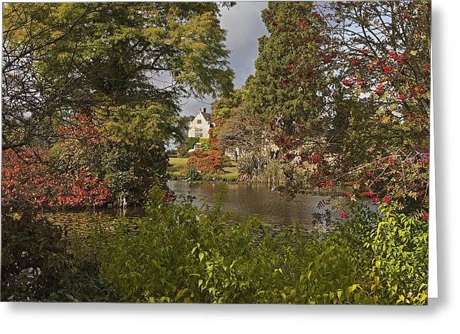 Coloured Greeting Cards - Lake and Foliage Greeting Card by Stephen Barrie