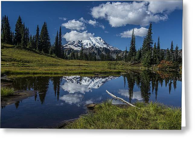 Public Issue Greeting Cards - Lake and Mountain Greeting Card by Mike Sedam