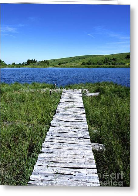 Pontoon Greeting Cards - Lake and wooden pontoon. Auvergne. France. Greeting Card by Bernard Jaubert
