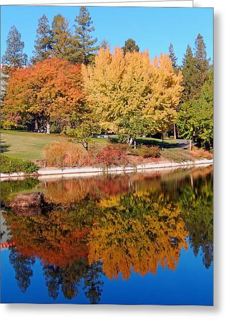 Uc Davis Greeting Cards - Lake at Davis Greeting Card by Jim Halas