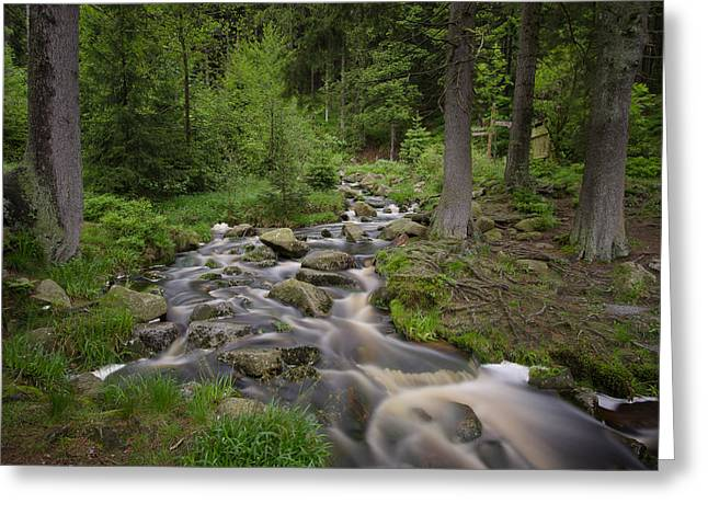 Tonemapping Greeting Cards - Lake at Harz Greeting Card by Steffen Gierok