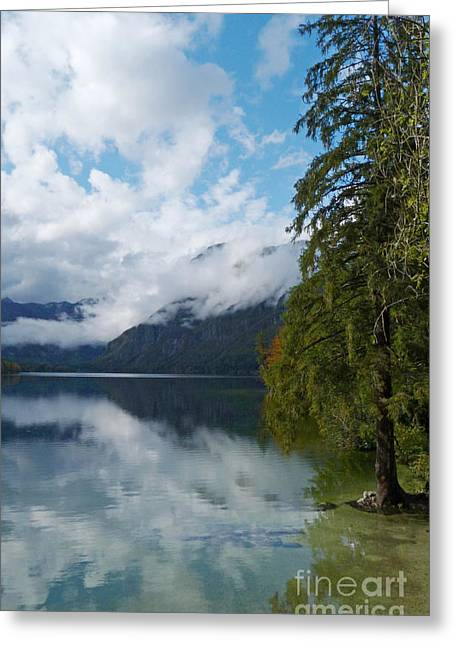 Bohinj Lake Greeting Cards - Lake Bohinj - Slovenia Greeting Card by Phil Banks