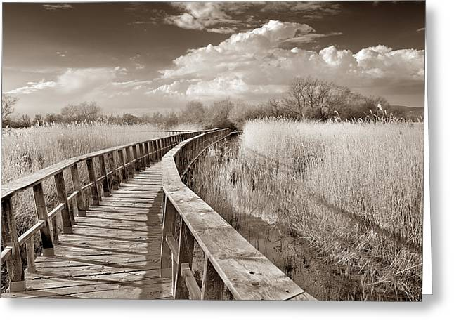 Ciudad Greeting Cards - Lake bridge Vintage Greeting Card by Guido Montanes Castillo