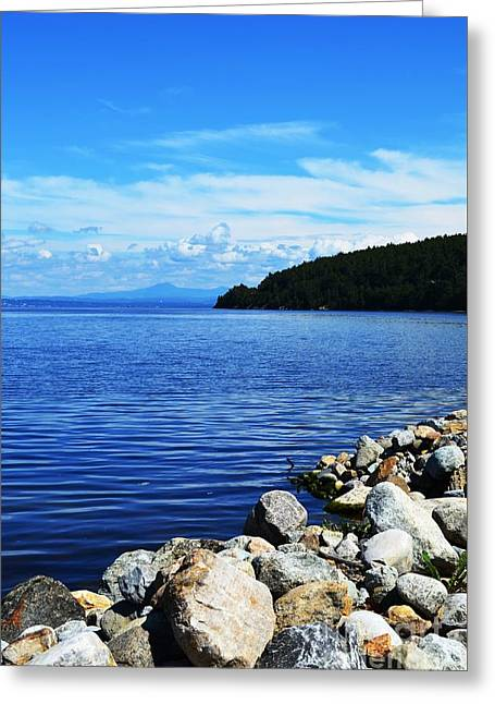 Port Kent Greeting Cards - Lake Champlain 4 Greeting Card by Sarah Holenstein