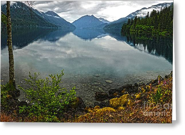 Lake Crescent - Washington - 04 Greeting Card by Gregory Dyer