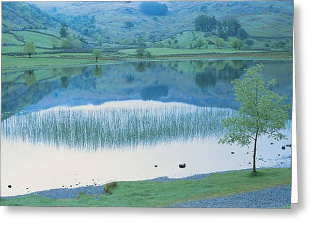 Wall Stone Wall Greeting Cards - Lake District England Greeting Card by Panoramic Images