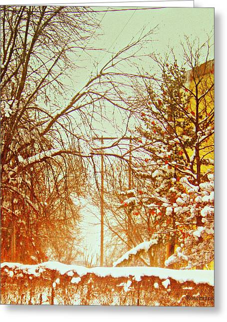 Willow Lake Greeting Cards - Lake Effect Snow At  North Monroe Grand Rapids Michigan Greeting Card by Rosemarie E Seppala