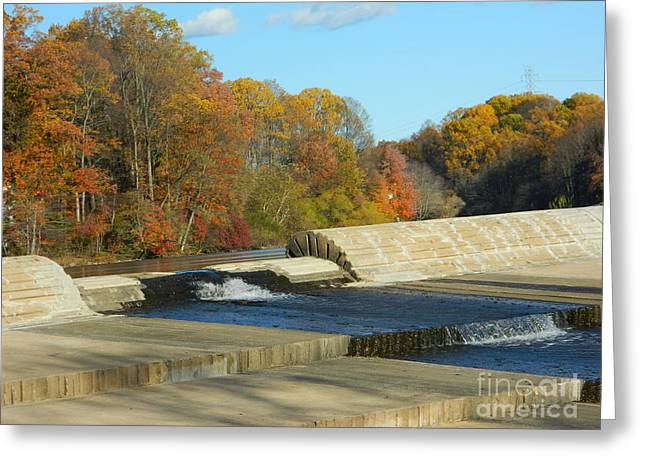 Dam Framed Prints Greeting Cards - Lake Elkhorn Dam Greeting Card by Emmy Marie Vickers