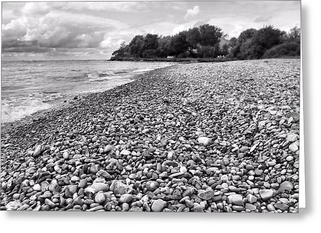 The Great Lakes Greeting Cards - Lake Erie Coast Black And White Greeting Card by Dan Sproul