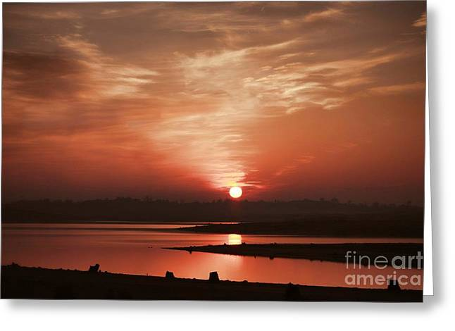 Polly Lake Greeting Cards - Lake Folsom California Sunset Greeting Card by Polly Peacock
