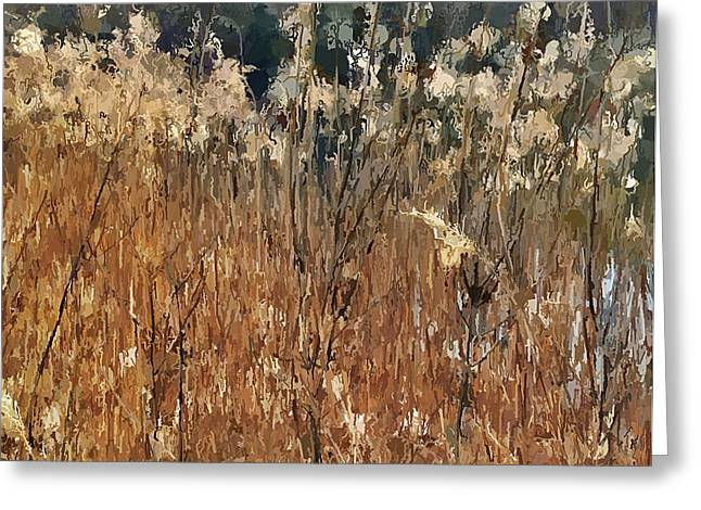 Enjoying Greeting Cards - Lake Grass Greeting Card by Yury Malkov