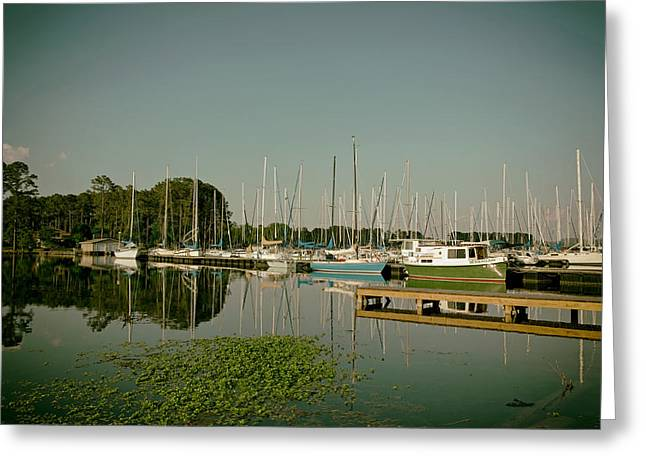 Sailboat Photos Greeting Cards - Lake Guntersville Alabama Greeting Card by Mountain Dreams