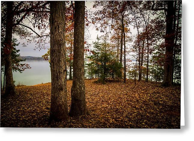 Steve Dupree Greeting Cards - Lake Hartwell Autumn Greeting Card by Steve DuPree