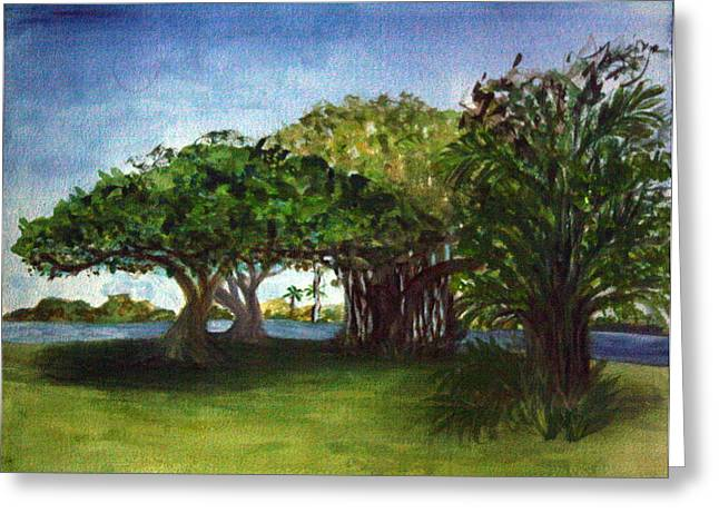 Walsh Lake Greeting Cards - Lake Ida Park East Trees Greeting Card by Donna Walsh