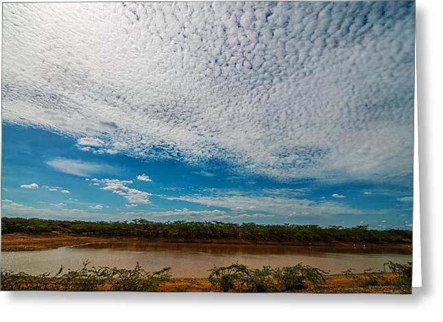 Dry Lake Greeting Cards - Lake in a Desert in Colombia Greeting Card by Jess Kraft