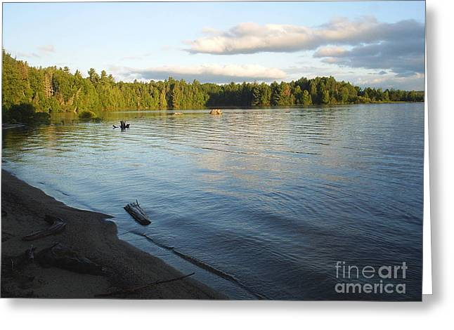 Jordan Wall Art Greeting Cards - Lake in Maine Greeting Card by Jeannie Atwater Jordan Allen