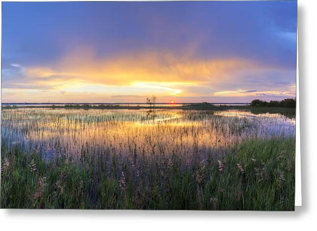 Tropical Beach Greeting Cards - Lake Jackson Sebring Florida Panorama Greeting Card by Debra and Dave Vanderlaan