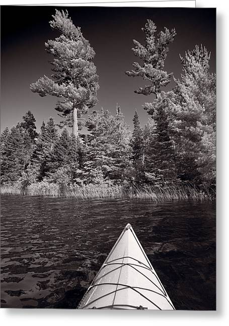 Kayaking Greeting Cards - Lake Kayaking BW Greeting Card by Steve Gadomski