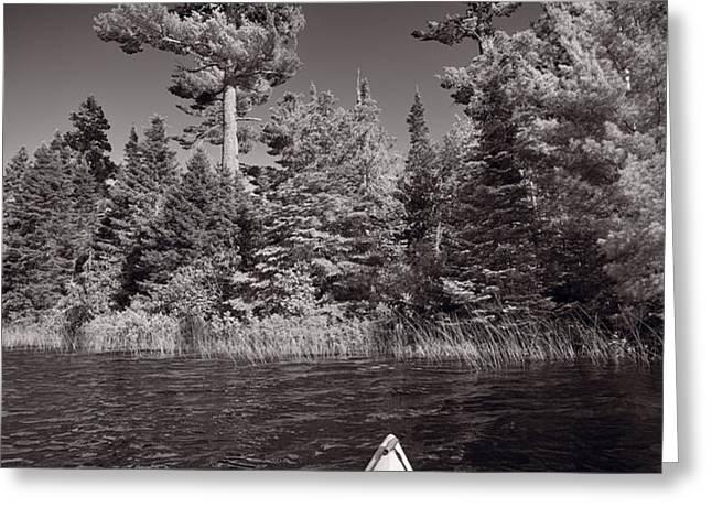 Lake Kayaking BW Greeting Card by Steve Gadomski