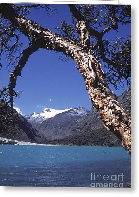 Peruvian Bark Greeting Cards - Lake Llanganuco Peru Greeting Card by James Brunker