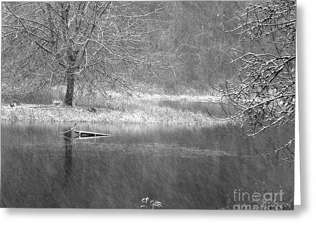 Lake Lois Greeting Card by Chuck Flewelling
