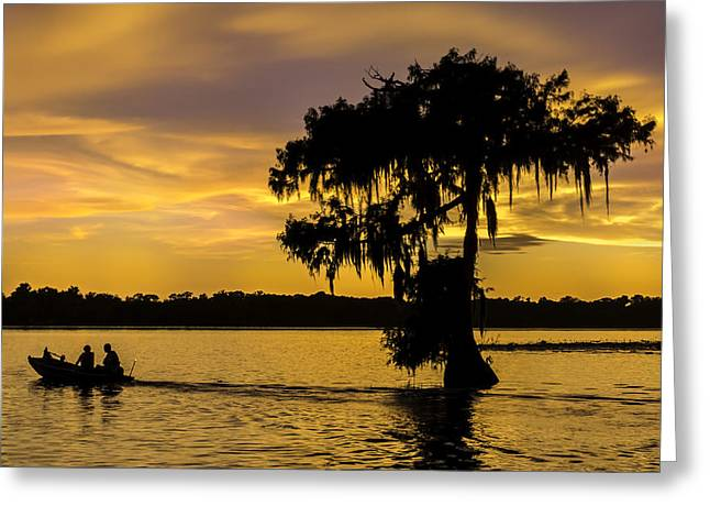 Swampland Greeting Cards - Lake Martin Sunset Greeting Card by Janet Fikar