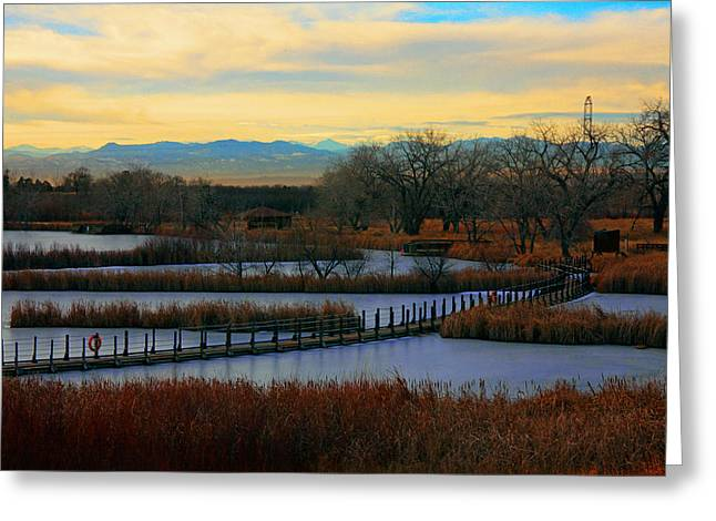 Dusk At The Lake Greeting Cards - Lake Mary Twilight Greeting Card by Mike Flynn