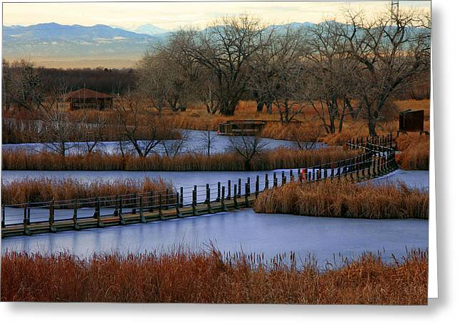 Dusk At The Lake Greeting Cards - Lake Mary Vespers Greeting Card by Mike Flynn