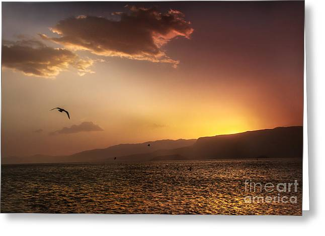 Haybale Greeting Cards - Lake Mead Sunrise Greeting Card by Robert Bales