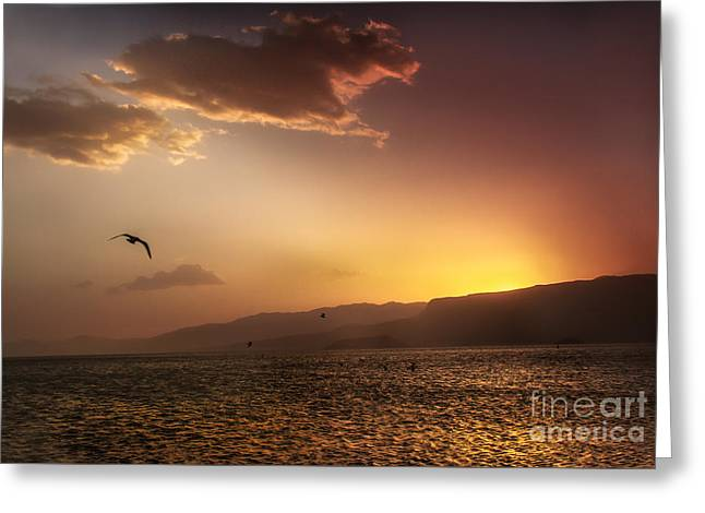 Hoover Dam Greeting Cards - Lake Mead Sunrise Greeting Card by Robert Bales