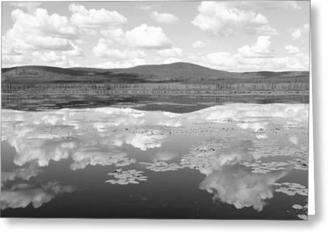 Back Country Greeting Cards - Lake Near Beaver Creek. Yukon Greeting Card by Panoramic Images