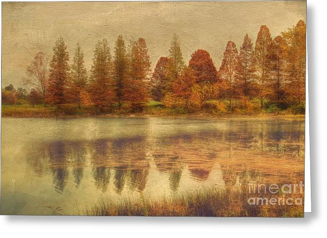 Fall Scenes Greeting Cards - Lake Nevin Greeting Card by Darren Fisher