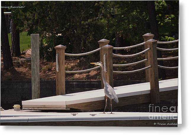 Slip Ins Greeting Cards - Lake Norman Heron Greeting Card by Tricia Andreassen