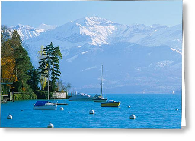 Boats In Water Greeting Cards - Lake On The Mountainside, Lake Thun Greeting Card by Panoramic Images