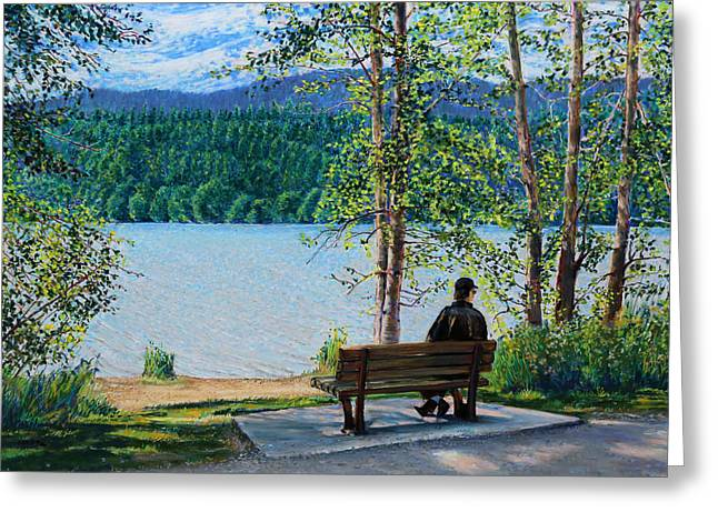 Birdseye Greeting Cards - Lake Padden - Schwartz Bench Greeting Card by Nick Payne