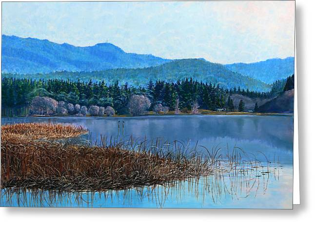 Birdseye Greeting Cards - Lake Padden - view near Gosset bench Greeting Card by Nick Payne