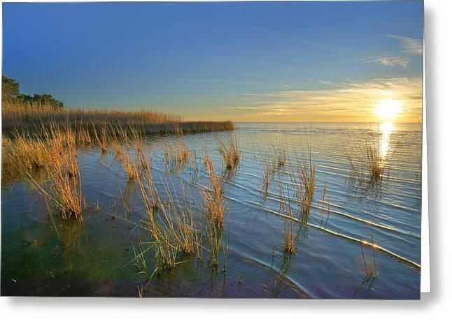 Lake Pontchartrain At Sunset Louisiana Greeting Card by Tim Fitzharris