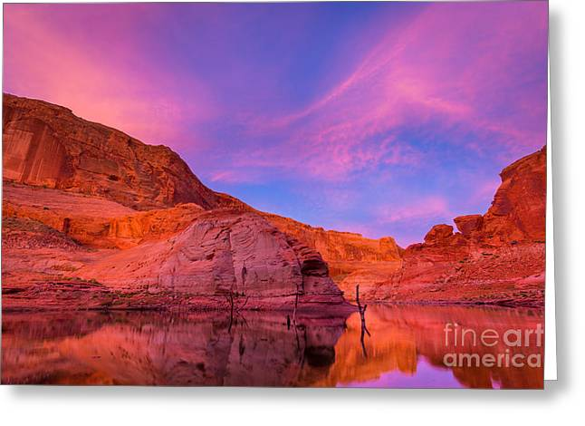 Lake Powell Dawn Greeting Card by Inge Johnsson