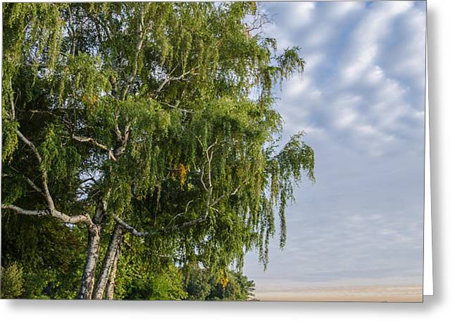 Lake Quannapowitt in Massachusetts  Greeting Card by Pat Lucas