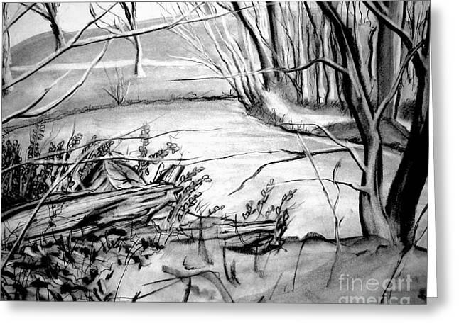 Landscapes Drawings Greeting Cards - Lake Greeting Card by Ryan Burton
