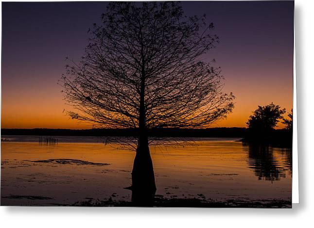 Western Ky Greeting Cards - Lake Sunset Greeting Card by Amber Kresge