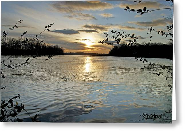 Steven Michael Photography And Art Greeting Cards - Lake Sunset Greeting Card by Steven  Michael