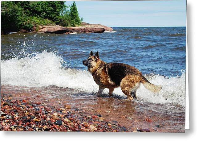 Agate Beach Greeting Cards - Lake Superior Fun Greeting Card by Michele Thielke
