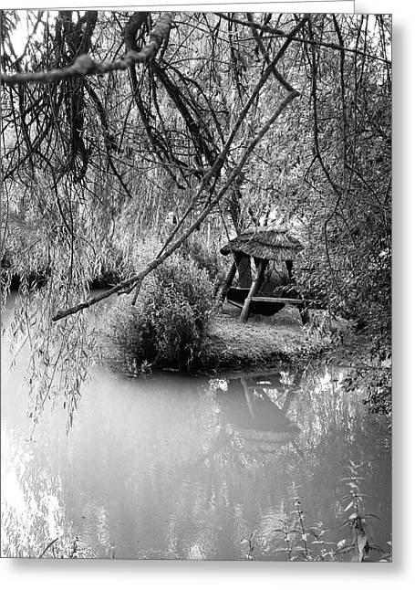 Amberley Greeting Cards - Lake Swing - black and white Greeting Card by Nicole Parks