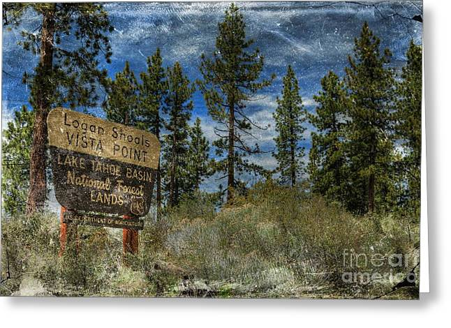 Lake Tahoe National Forest Greeting Card by Benanne Stiens