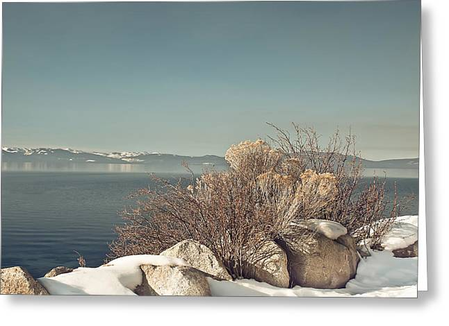 Kim Photographs Greeting Cards - Lake Tahoe Winter Greeting Card by Kim Hojnacki