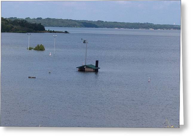 River Flooding Greeting Cards - Lake Texoma Greeting Card by Robyn Stacey