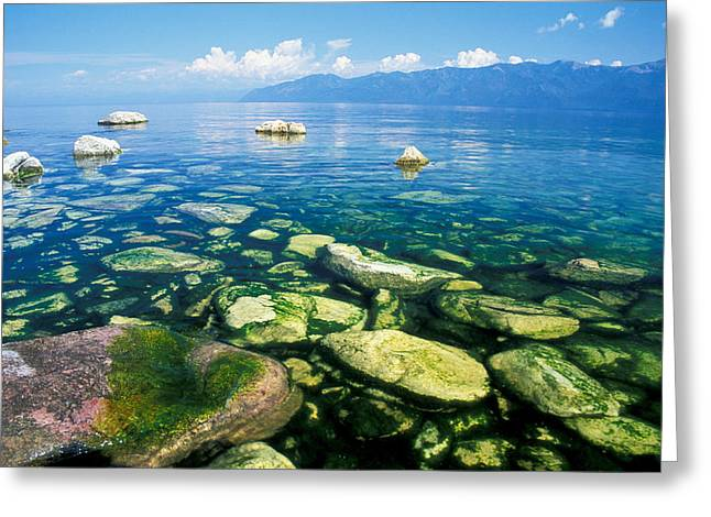 Blue Green Water Greeting Cards - Lake View Greeting Card by Anonymous