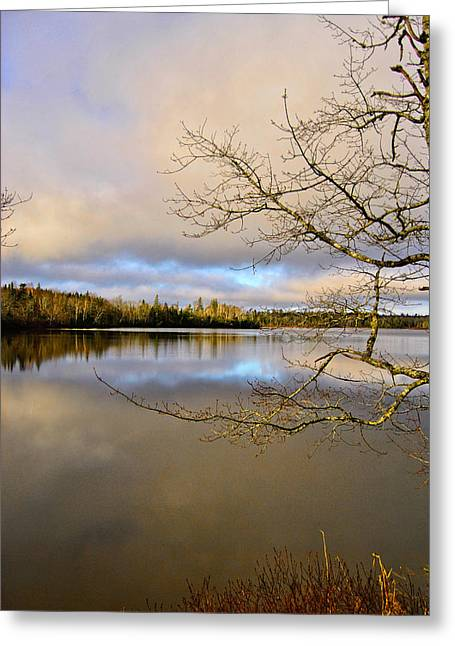 Reflections Of Sky In Water Greeting Cards - Lake View Greeting Card by Kathleen Sartoris