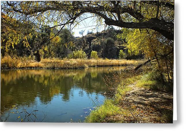 Lucinda Walter Greeting Cards - Lake View Greeting Card by Lucinda Walter